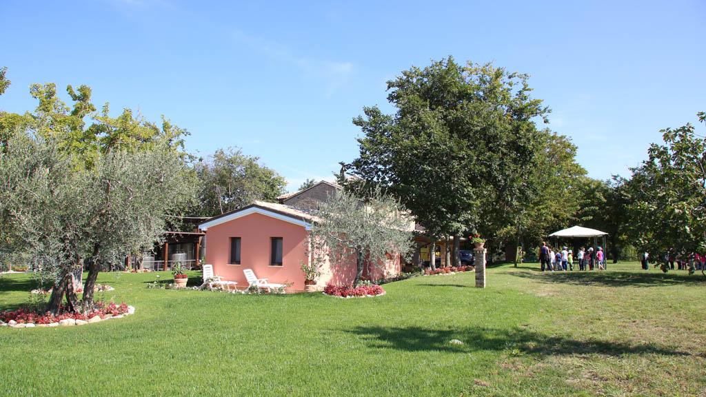 fattoria_2147