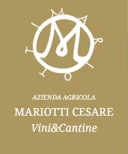 Cantine Mariotti